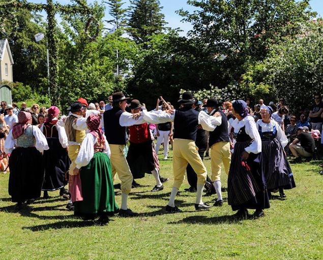 Trehäradsbygdens dansare har uppvisning.